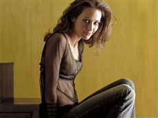 Amy Acker #005 Wallpapers Pictures Photos Images