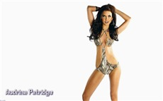 Audrina Patridge #006 Wallpapers Pictures Photos Images