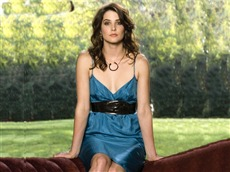 Cobie Smulders #004 Wallpapers Pictures Photos Images