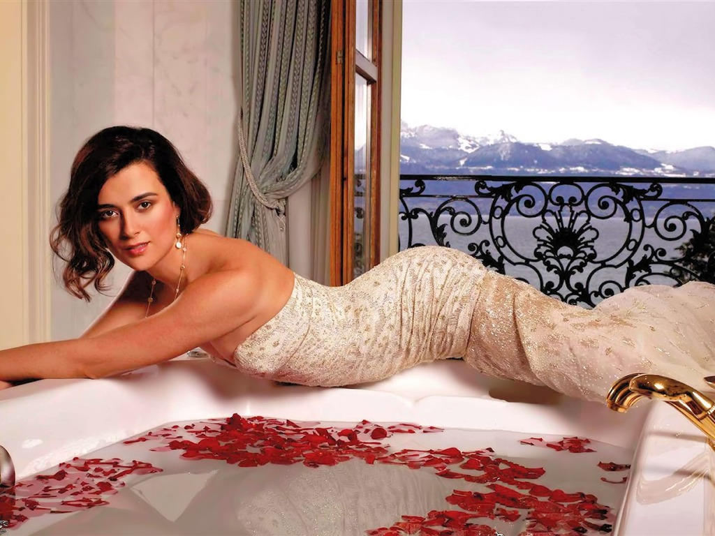 Cote de Pablo #019 - 1024x768 Wallpapers Pictures Photos Images