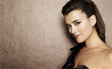 Cote de Pablo #003 Wallpapers Pictures Photos Images