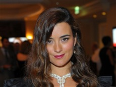 Cote de Pablo #009 Wallpapers Pictures Photos Images