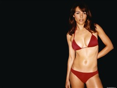 Elizabeth Hurley #029 Wallpapers Pictures Photos Images