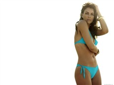 Elizabeth Hurley #043 Wallpapers Pictures Photos Images
