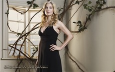 Elizabeth Mitchell #004 Wallpapers Pictures Photos Images