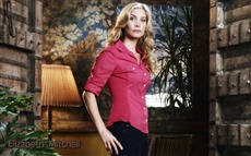Elizabeth Mitchell #008 Wallpapers Pictures Photos Images