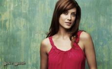 Kate Walsh Wallpapers Pictures Photos Images