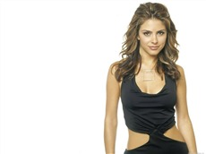 Maria Menounos #005 Wallpapers Pictures Photos Images