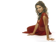 Maria Menounos #011 Wallpapers Pictures Photos Images