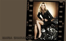 Maria Sharapova #019 Wallpapers Pictures Photos Images