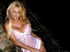Pamela Anderson #043 Wallpapers Pictures Photos Images