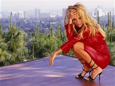 Pamela Anderson #045 Wallpapers Pictures Photos Images