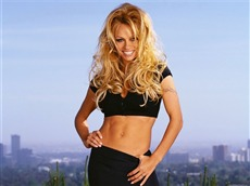 Pamela Anderson #047 Wallpapers Pictures Photos Images
