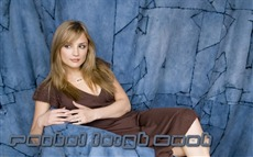 Rachael Leigh Cook #012 Wallpapers Pictures Photos Images