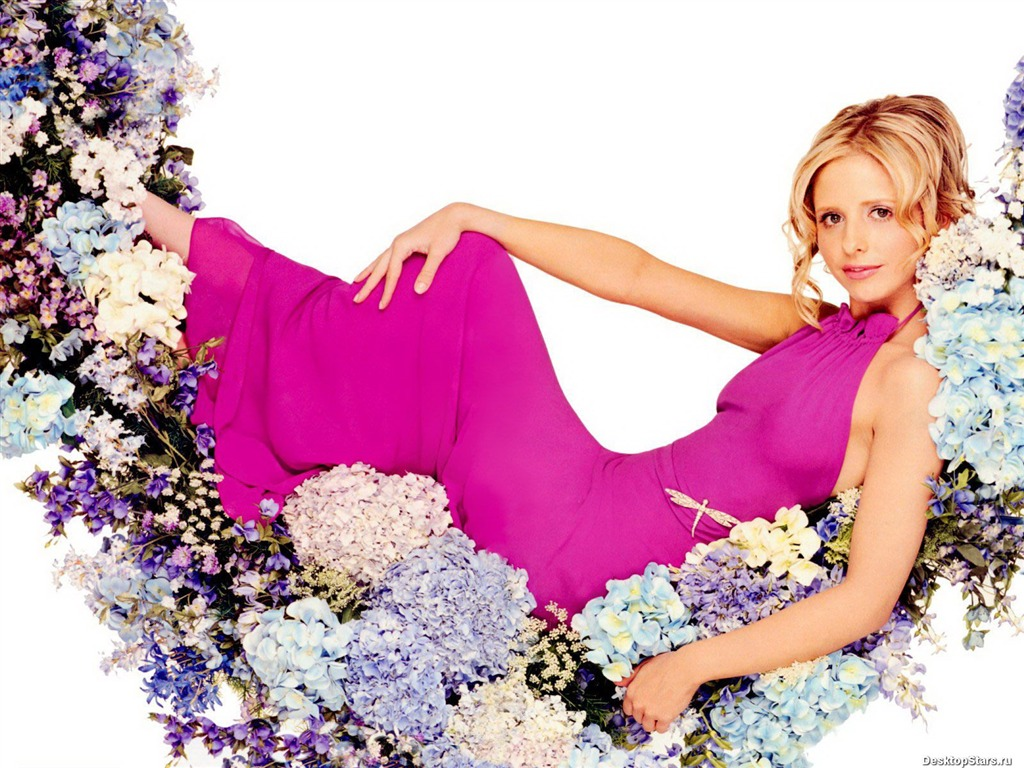 Sarah Michelle Gellar #056 - 1024x768 Wallpapers Pictures Photos Images