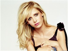 Sarah Michelle Gellar #085 Wallpapers Pictures Photos Images