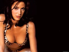 Shannon Elizabeth Wallpapers Pictures Photos Images