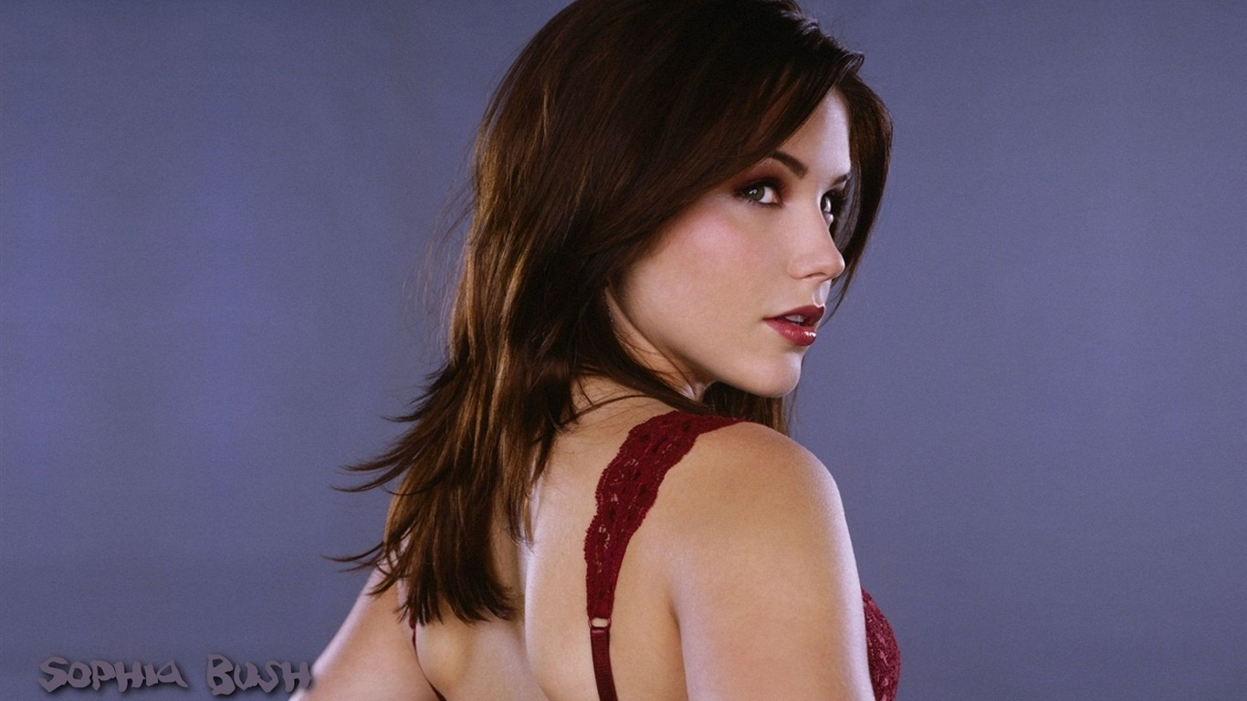 Sophia Bush #007 - 1366x768 Wallpapers Pictures Photos Images