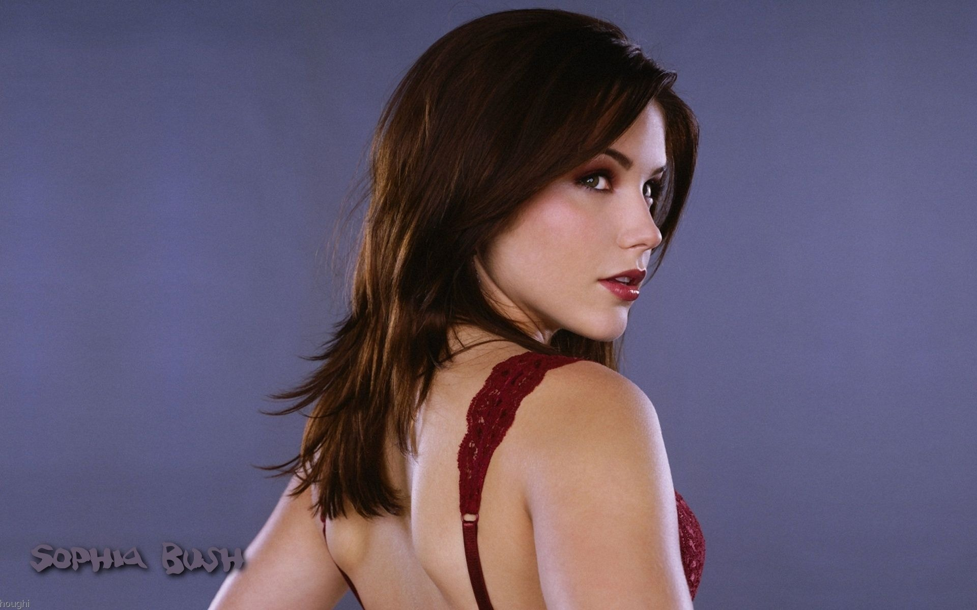 Sophia Bush #007 - 1920x1200 Wallpapers Pictures Photos Images